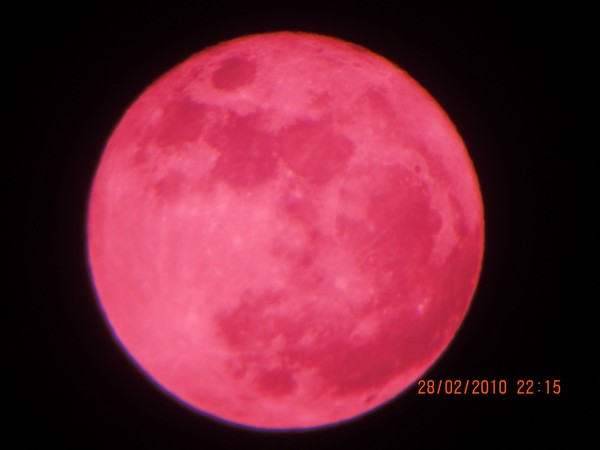 Resultado de imagem para lune rose
